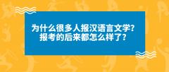 为什么很多人报汉语言文学?报考的后来都怎么样了?